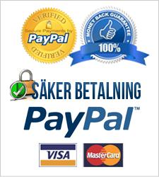 Säker Betalning